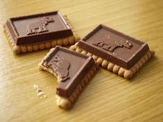 elephant cookie