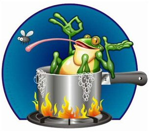 frog-in-the-kettle