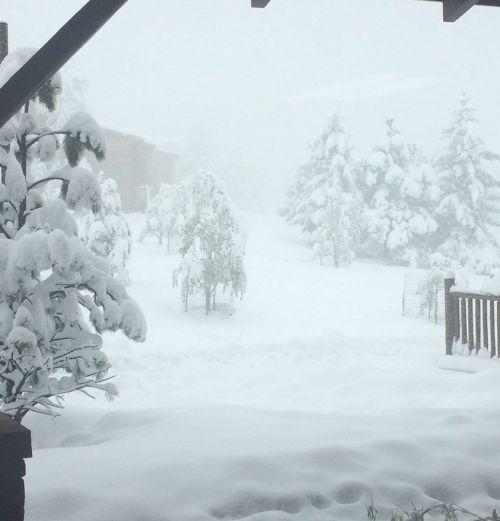 Snow CO 2017